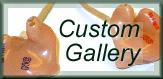 Custom Products Image Gallery at ear plug superstore